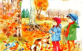 Осень — картинки для для детей дошкольного возраста (4-5-6 лет) для занятий в детском саду