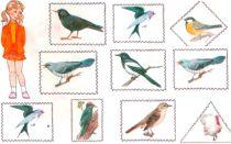 Конспект занятия по развитию речи в старшей группе на тему «Перелетные птицы»