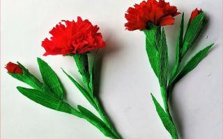 Гвоздики из бумаги своими руками: идеи для детей ко Дню Победы