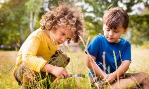 Безопасность в лесу: правила поведения для детей в картинках