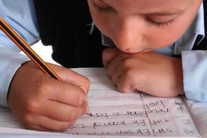 Трудности в обучении детей с дизартрией