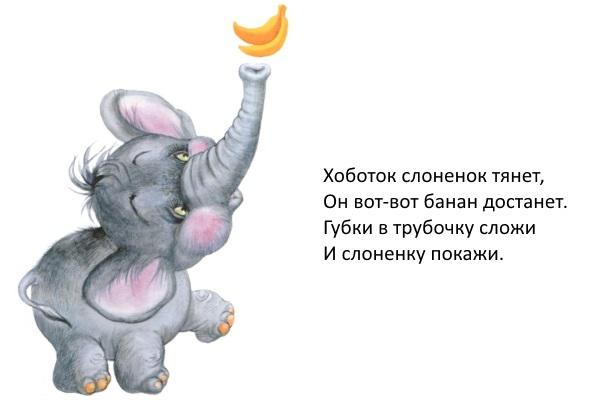Шоу, братьев, шумахеров - Home Facebook