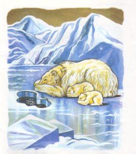 Животные севера в сюжетных картинках 2