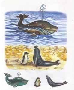 Животные севера в сюжетных картинках 5