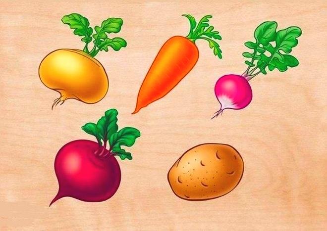 Плакат овощи 2