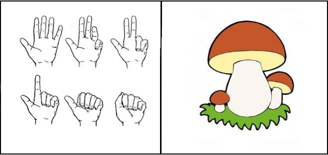 Упражнение за грибами