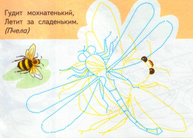 Задание Обведи контур пчелы