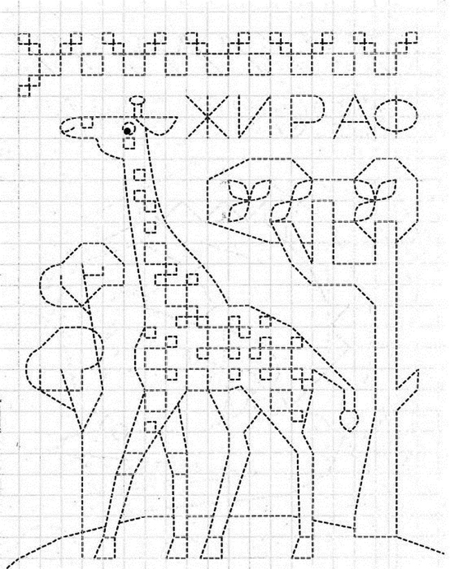 Обведи по клеточкам жирафа