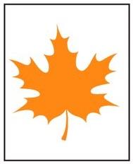 Оранжевый лист