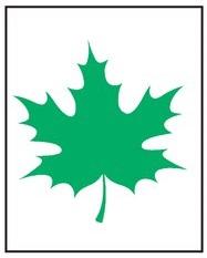 Зеленый лист 2