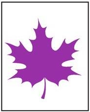 Фиолетовый лист 2