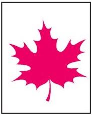 Розовый лист2
