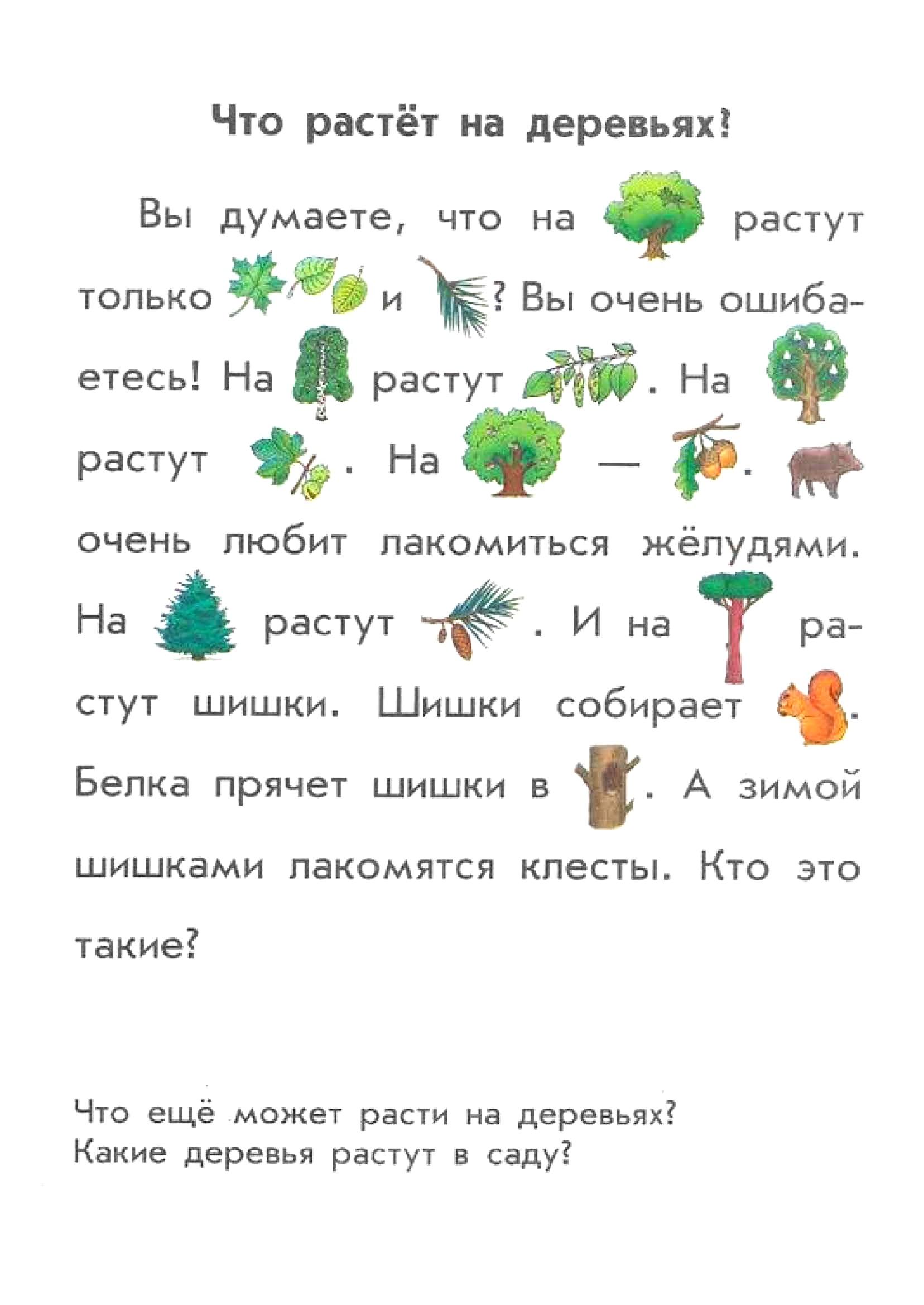 Текст с картинками 12