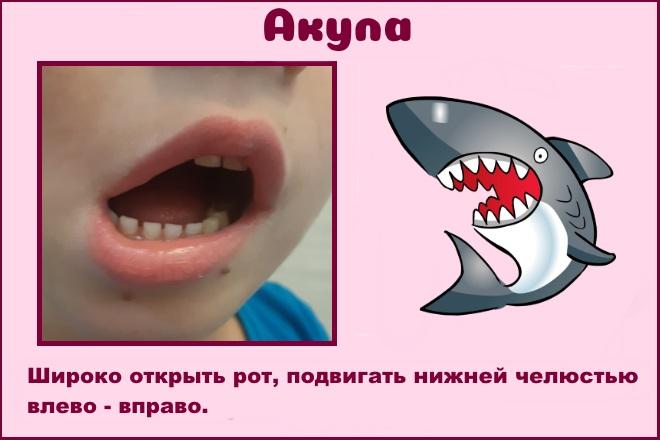 Упражнение Акула
