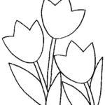 Тюльпаны шаблон для вырезания
