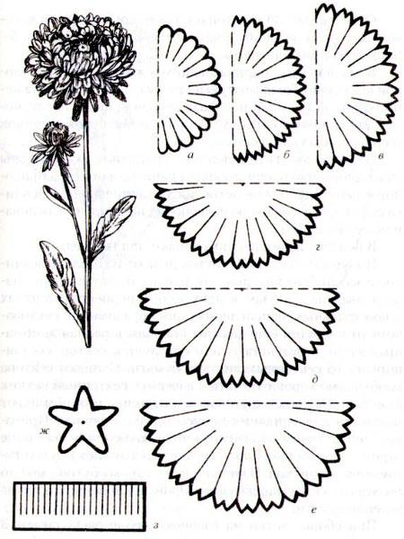 Черно-белый шаблон гвоздики