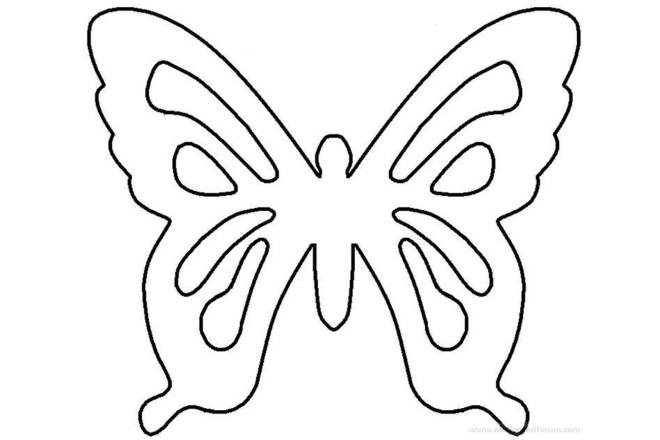 Шаблон 1 бабочки