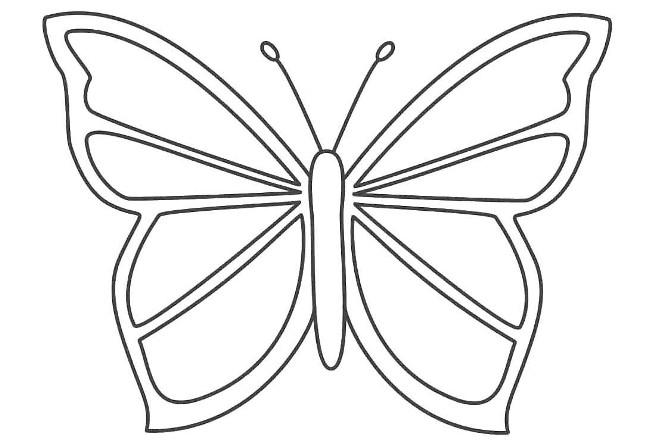 Шаблон 3 бабочки