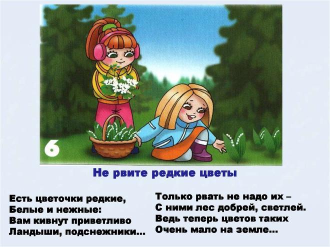 Правило поведения в лесу 6