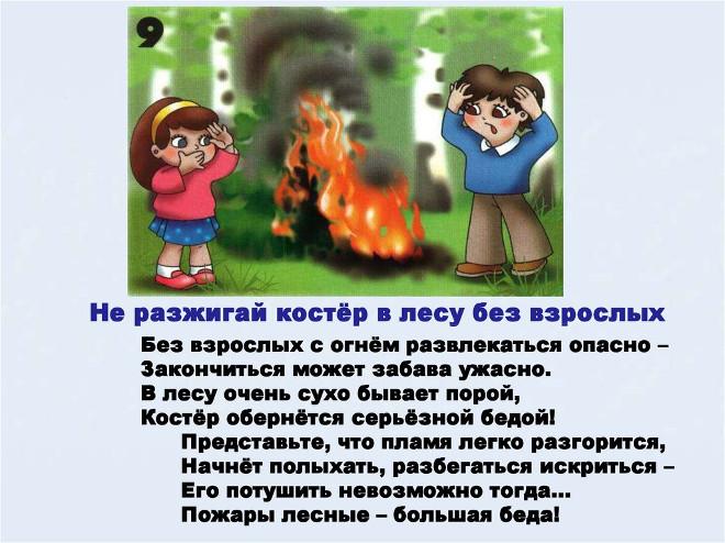 Правило поведения в лесу 9