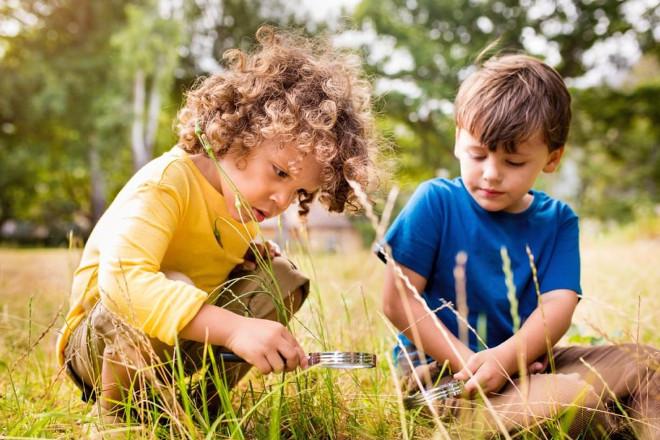 Дети на лесной поляне