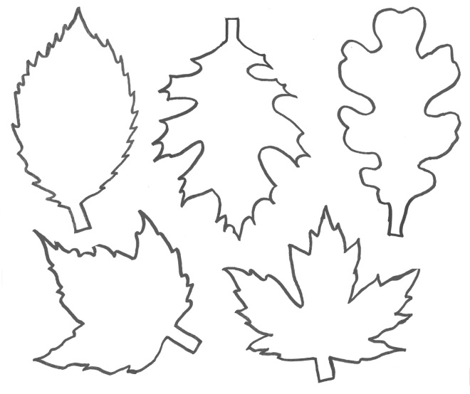 Шаблон листьев 1