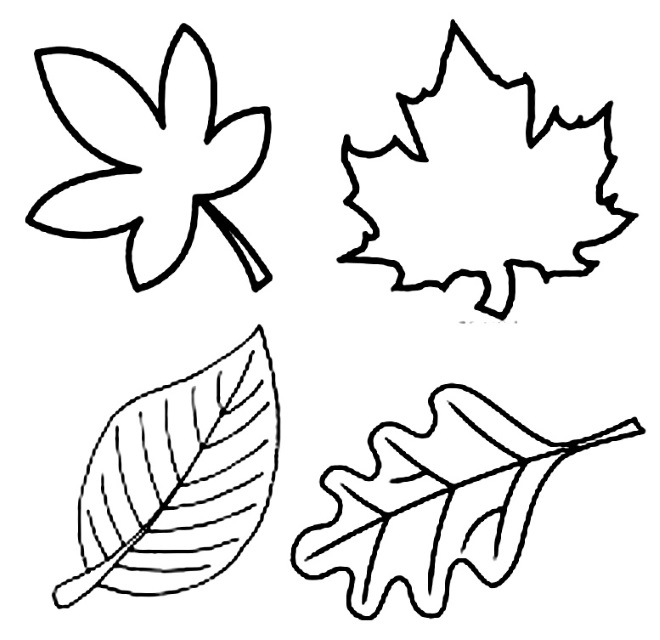 Шаблон листьев 2
