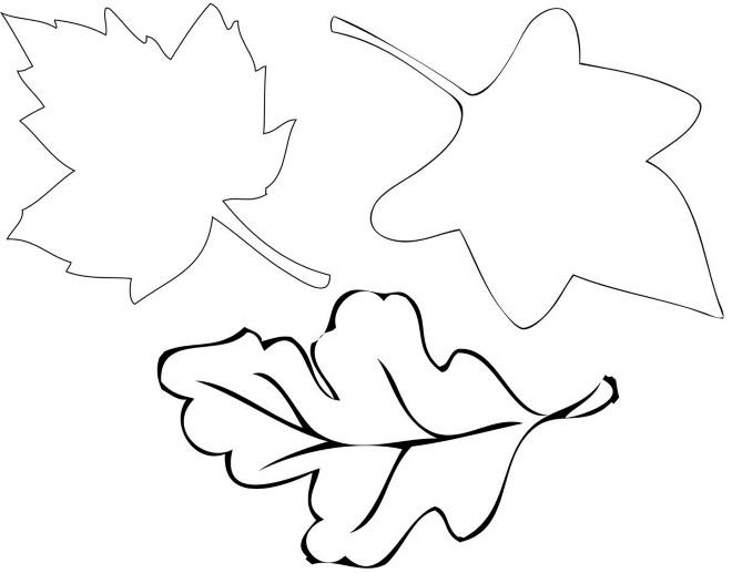 Шаблон листьев 3