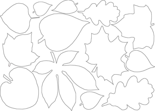 Шаблон листьев 6