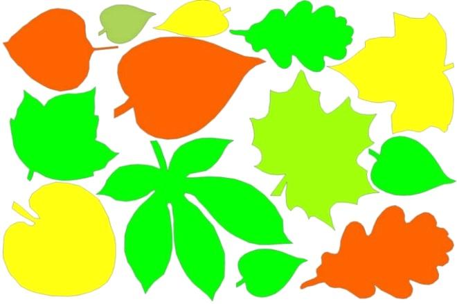 Цветной шаблон листьев 3