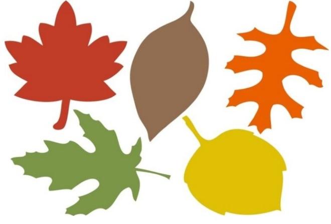Цветной шаблон листьев 4