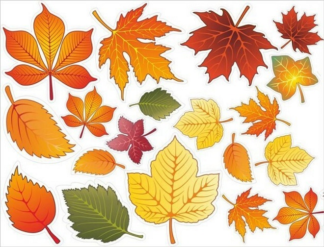 Цветной шаблон листьев 5