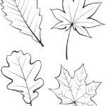 Вертикальный шаблон листьев 1