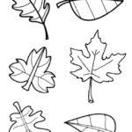 Вертикальный шаблон листьев 3